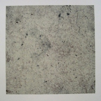 Ginny Reed (UK) Untitled Photo plate with dust 254mm x 254mm