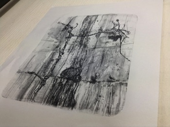 Print by Linda Davies Stone Lithography Class at  The Gas Studio